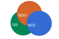 Food, Energy, Water logo