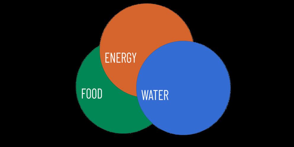Food, Energy, Water logo